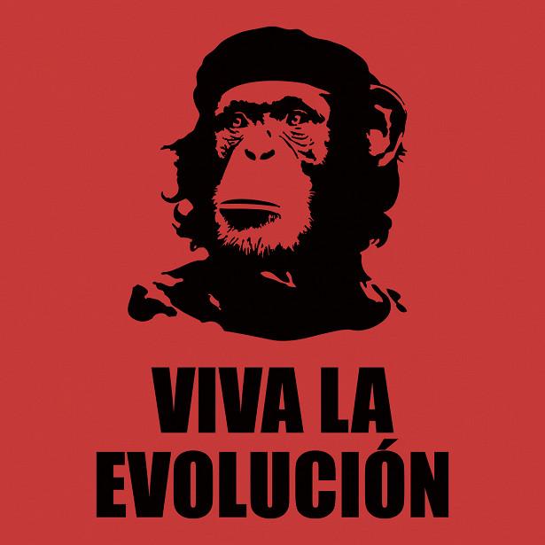 evolucion.jpg.340d9da6dcdf1a3d6fc11ead95b756d4.jpg