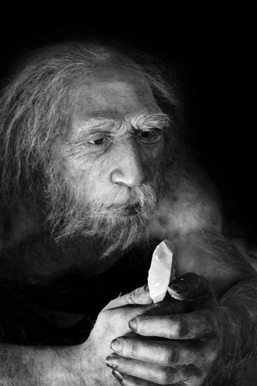 neandertalBNsmall.thumb.jpg.7988518b4873d7065b9d0b83d9004c07.jpg