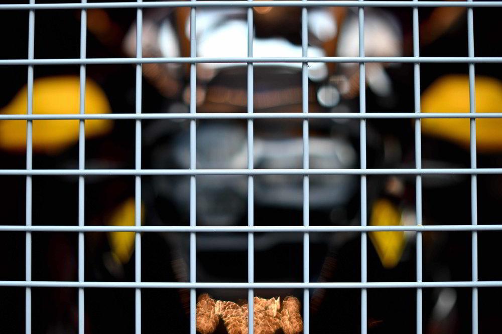 UZ5_1630_01_01.thumb.JPG.6894d4b57795b5155d13732ba3636291.JPG