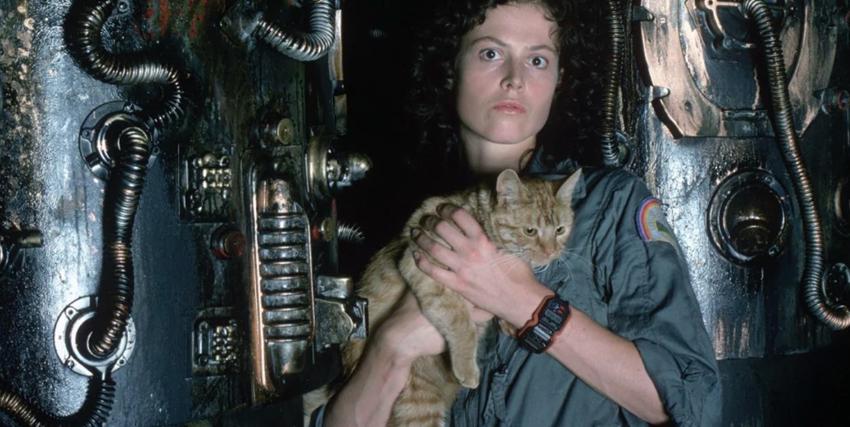 fr-alien-1979-film03.jpg.6f8dfa84a9170f54c11323eec1104549.jpg