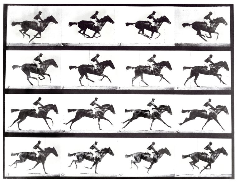 high-speed-sequence-of-a-galloping-horse-and-rider-680806289-59c0259c68e1a20014827f5f.jpg.94fd5e7346e0fc4801571860f39721b7.jpg