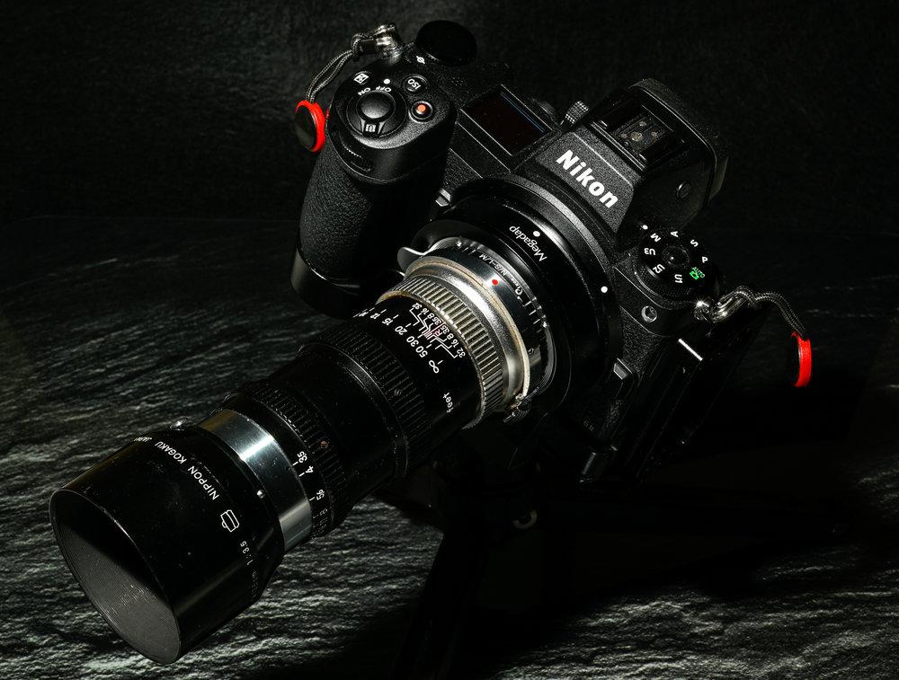 1245125973_10128032021-_Z6L5989MaxAquilaphoto(C).thumb.JPG.f32e2f35efeb374cc6c79b3ee3edbfef.JPG