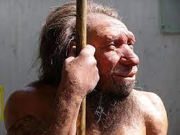 1539110543_neanderportrait.jpg.b781cce4e6928a00e4dccec71e78750e.jpg