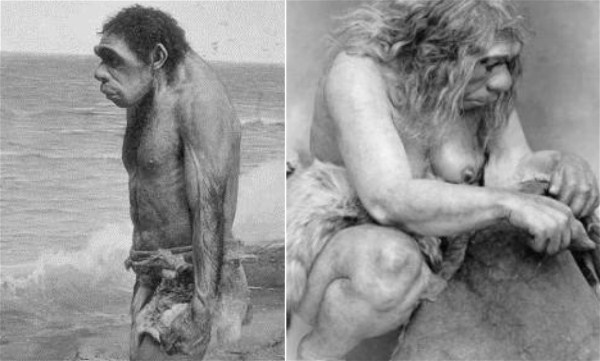 1930s-Neanderthal-Male-Female-exhibited-in-the-Field-Museum-Chicago.jpg.d48aaa32fd1bff45b633c528e124021f.jpg