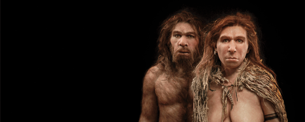 neanderthal-hero-l.thumb.png.1342c928965ee00e92188acaf761bf28.png