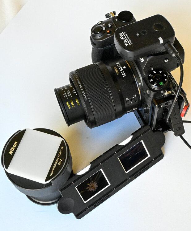 1847842778_01216072021-_Z5L3562MaxAquilaphoto(C).thumb.JPG.ed1c485e231df8a0f87ed0e7a95cdea8.JPG