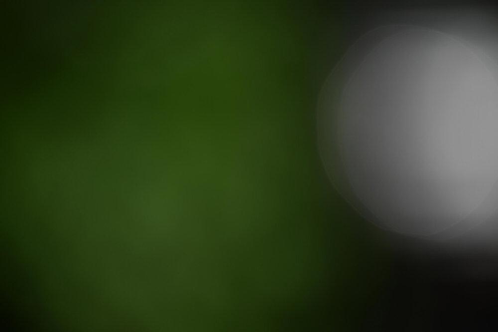 Z50_5885.thumb.jpg.d8ad977568d922671b3a3de9907f8f76.jpg